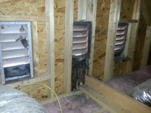 Bat control Bat Removal Concord NC, Kannapolis NC, Harrisburrg NC