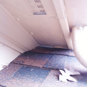 Finished Squirrel-proof Soffit